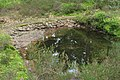 Camp celtique de la Bure - Bassin rustique.jpg