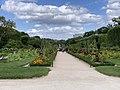 Carré Rosiers Jardin Plantes - Paris V (FR75) - 2021-07-30 - 2.jpg