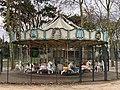 Carrousel Avenue Anna Politkovskaïa - Paris XII (FR75) - 2021-01-19 - 2.jpg