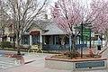 Carson City - panoramio (42).jpg
