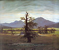 Caspar David Friedrich Landscape with Solitary Tree.jpg