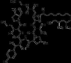 Struktur von Caspofungin