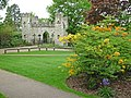Castle Gateway - geograph.org.uk - 1305552.jpg