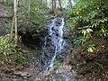 Cataract-falls-gsmnp1.jpg