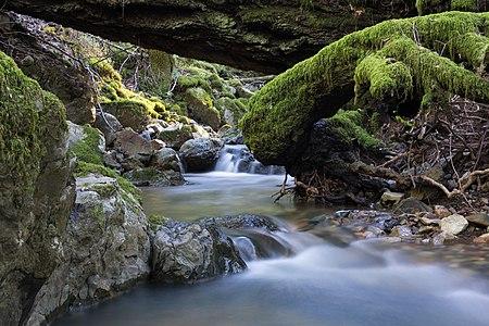 Cataract Creek, Mount Tamalpais State Park, Marin County, California