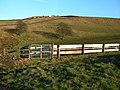 Cattle Pens - geograph.org.uk - 327833.jpg