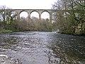 Cefn railway viaduct over river Dee - geograph.org.uk - 36219.jpg