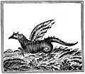Champlain - Oeuvres de Champlain publiées sous le patronage de l'Université Laval, Tome 1, 1870 - planche - 047.jpg