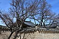 Changdeokgung Palace, Seoul, constructd in 1405 (27) (41070703592).jpg