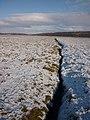 Channel on the saltmarsh, Warton Sands - geograph.org.uk - 1658581.jpg