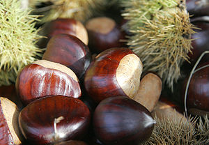 Nut (fruit) - Chestnuts are both botanical and culinary nuts.