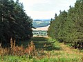 Chevin Forest Park - geograph.org.uk - 41262.jpg