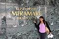 Chiba Keisei Hotel Miramare & Amy Todd (30023220335).jpg