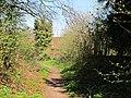 Chiltern Way near Lodge Hill - geograph.org.uk - 1815146.jpg