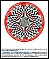 Circular Chess for 6 players with Rook explanation.jpg