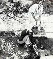 Clean Water Pours out of a Recently Cleared Spring, Algeria, 1964 (13875628723).jpg