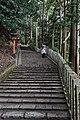 Climbing Mt Kurama (6911097914).jpg