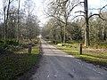 Clumber Park - Crossroads View - geograph.org.uk - 683112.jpg