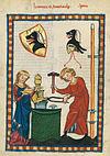 Codex Manesse 256v Hartmann von Starkenberg.jpg
