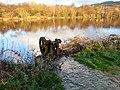 Compstall Mill Pond - geograph.org.uk - 1617519.jpg