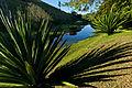 Conservatória com lago.jpg