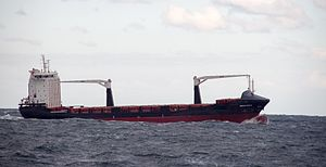 Container ship Reecon Whale on Black Sea near Constanța Romania.jpg