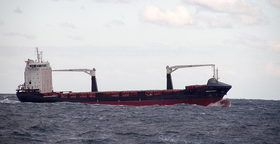 Container ship Reecon Whale on Black Sea near Constanța Romania