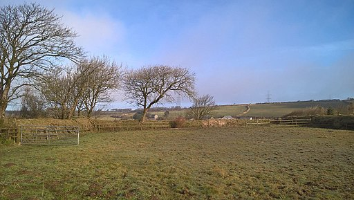 Cornish Paddock