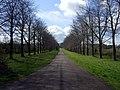Coronation Avenue - geograph.org.uk - 764737.jpg