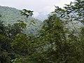 Costa Rica (6090817184).jpg