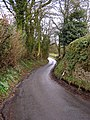 Country Lane - geograph.org.uk - 150731.jpg