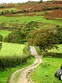 Country lanes - geograph.org.uk - 165077.jpg