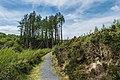 County Cavan - Tullygobbin Hill - 20190514154257.jpg