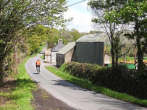 County Leitrim - A typical country lane near Carrigallen.