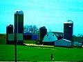 Coyle Dairy Farm - panoramio.jpg