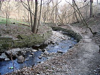 Yellow Creek (Toronto) Stream in Ontario, Canada