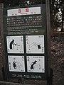 Cuidado com os veados! - Be careful with the deers (7847759932).jpg