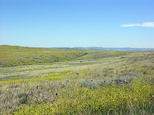 Custer Battlefield today