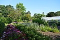 Cut Flower Beds of Myddelton House Gardens.jpg