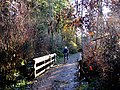 Cyclist slowing to cross slippery wood bridge. READ INFO IN PANORAMIO-COMMENTS - panoramio.jpg