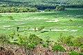 DSC 4164 Reserva Agricula Rio Geba, Bafata Guiné-Bissau 04.jpg