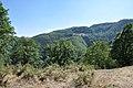 Dacian Fortress of Capalna 013.jpg