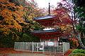 Dai-itoku-ji Kishiwada Osaka pref08s3.jpg