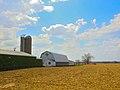 Dairy Farm near Lake Wisconsin - panoramio.jpg