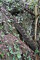 Dangerous stairway to cave (28996369652).jpg