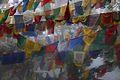 Darjeeling Prayer Flags (91397626).jpg