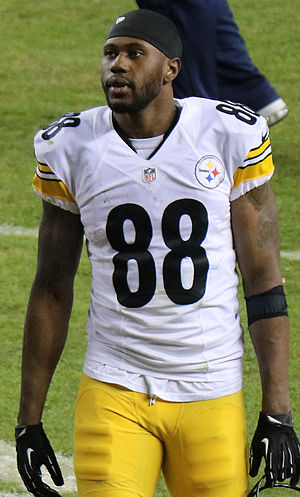 Darrius Heyward-Bey - Heyward-Bey in the 2015 NFL postseason.