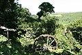 Dartmoor Forest, below Brimpts Farm - geograph.org.uk - 892781.jpg