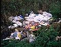 De Demervallei, afval in een aangestorte meander - 354922 - onroerenderfgoed.jpg