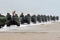 Defense.gov News Photo 120206-N-VG904-065 - U.S. Marine Corps amphibious assault vehicles move into position after reaching the beach during the amphibious assault phase of Bold Alligator.jpg